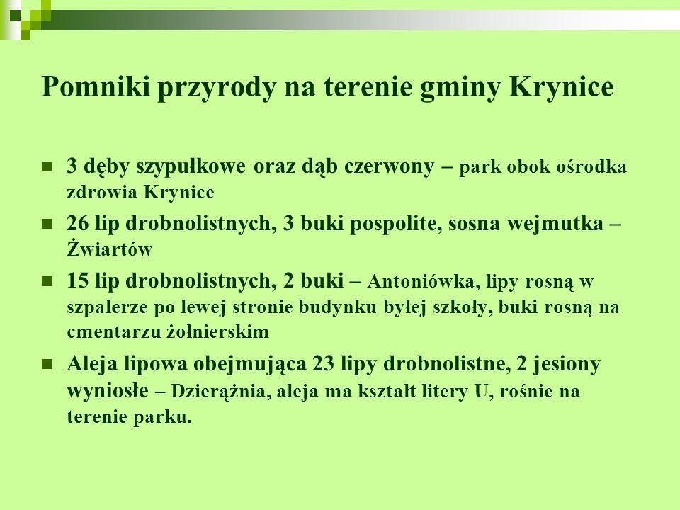 Pomniki przyrody na terenie gminy Krynice