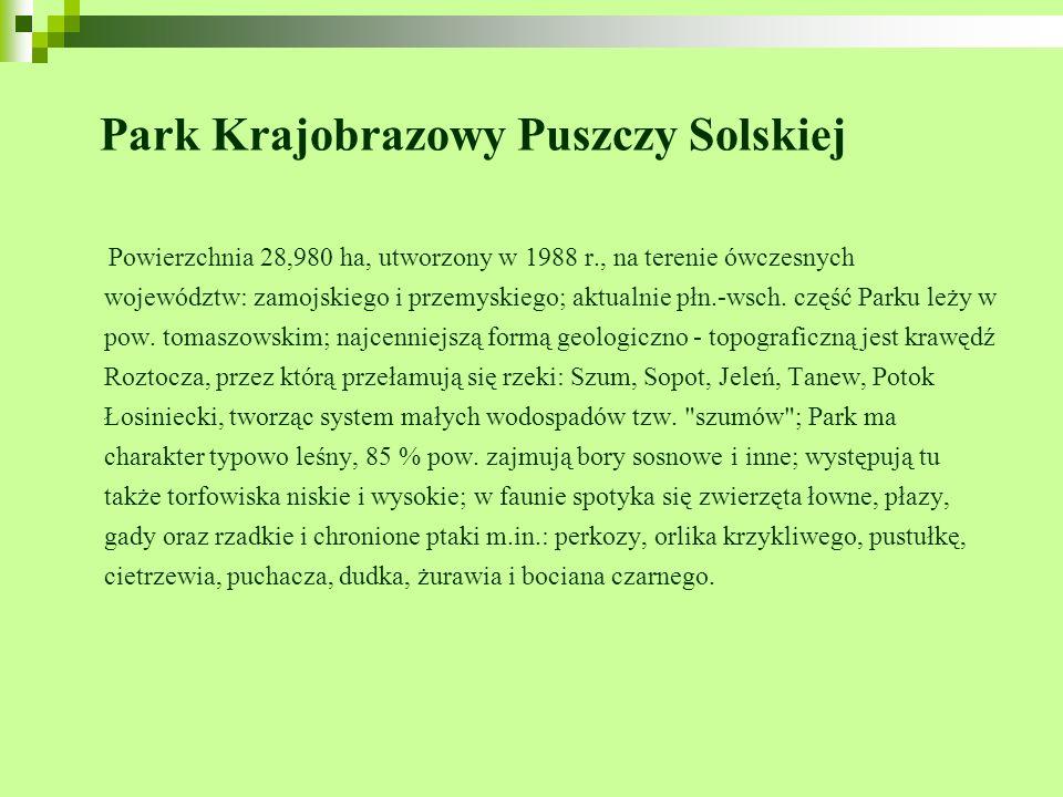 Park Krajobrazowy Puszczy Solskiej