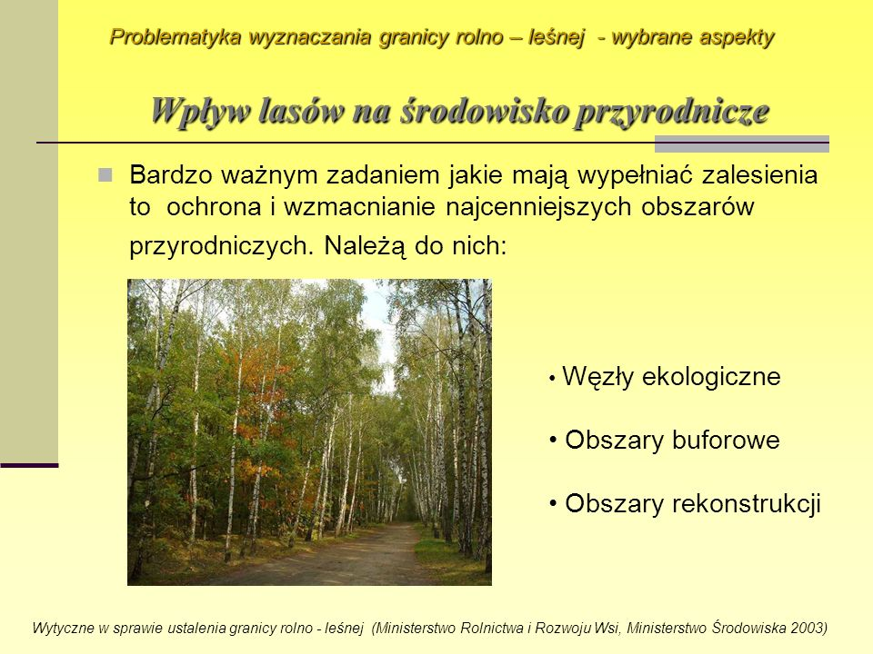 Wpływ lasów na środowisko przyrodnicze
