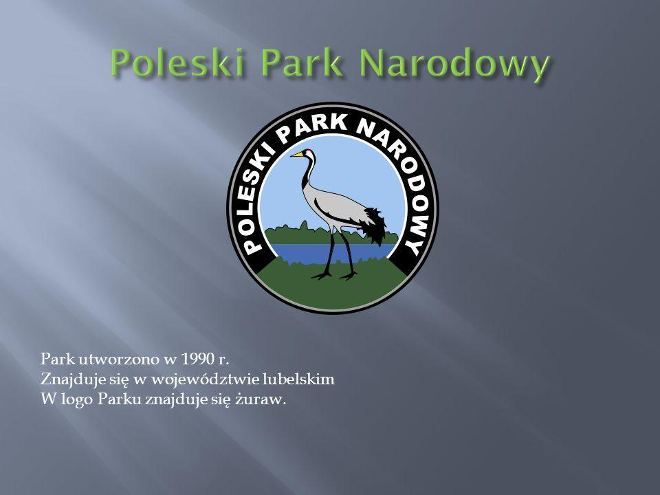 Poleski Park Narodowy Park utworzono w 1990 r.