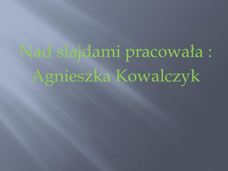 Nad slajdami pracowała : Agnieszka Kowalczyk