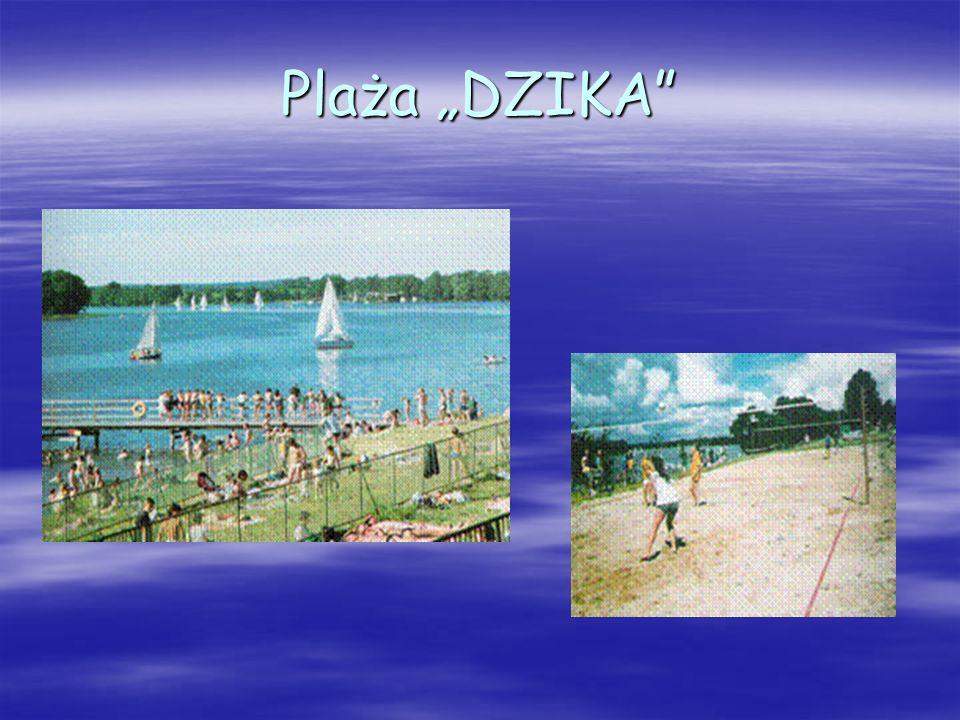 """Plaża """"DZIKA"""