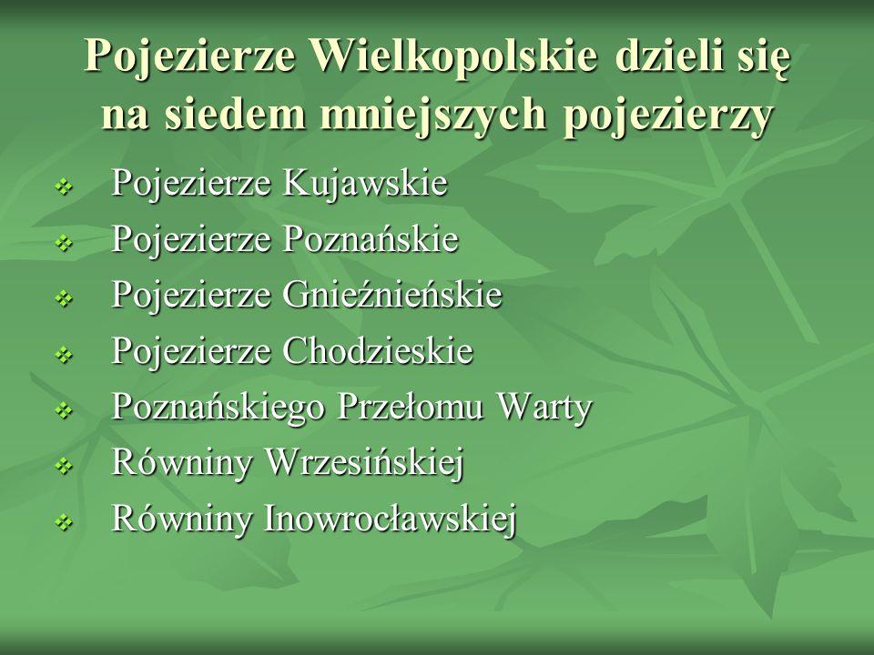 Pojezierze Wielkopolskie dzieli się na siedem mniejszych pojezierzy
