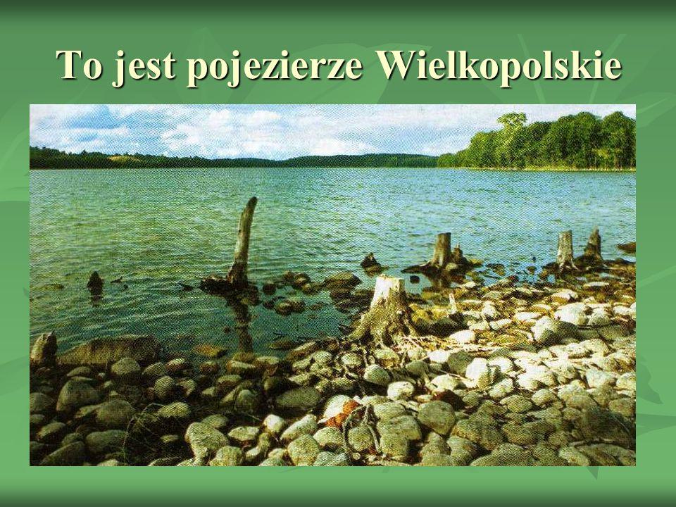 To jest pojezierze Wielkopolskie