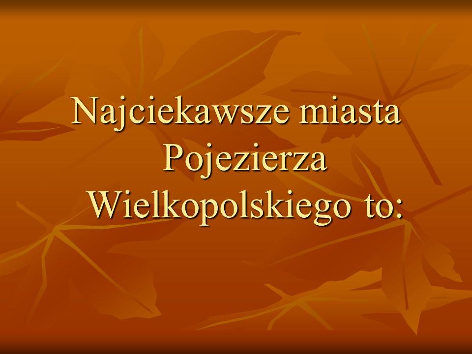 Najciekawsze miasta Pojezierza Wielkopolskiego to: