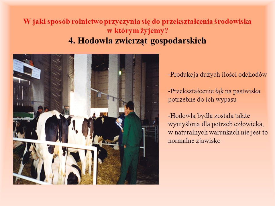 W jaki sposób rolnictwo przyczynia się do przekształcenia środowiska w którym żyjemy 4. Hodowla zwierząt gospodarskich