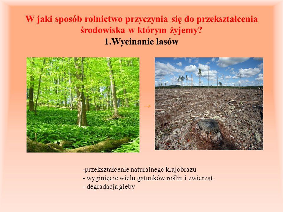 W jaki sposób rolnictwo przyczynia się do przekształcenia środowiska w którym żyjemy 1.Wycinanie lasów