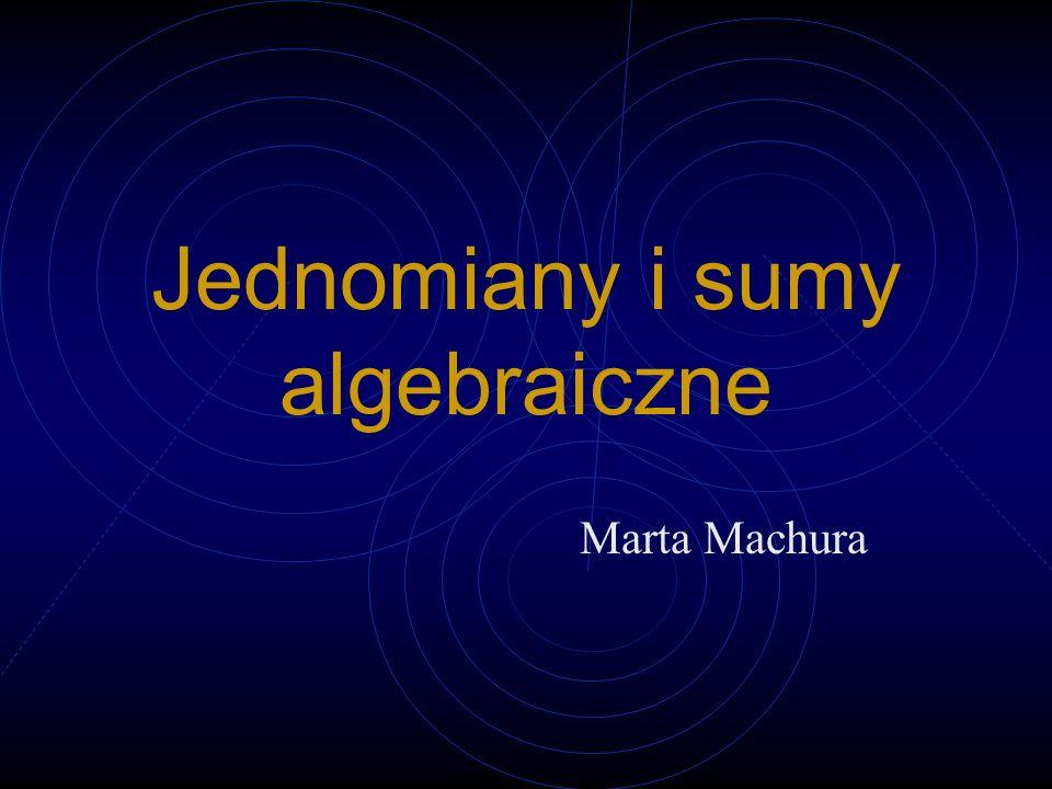 Jednomiany i sumy algebraiczne