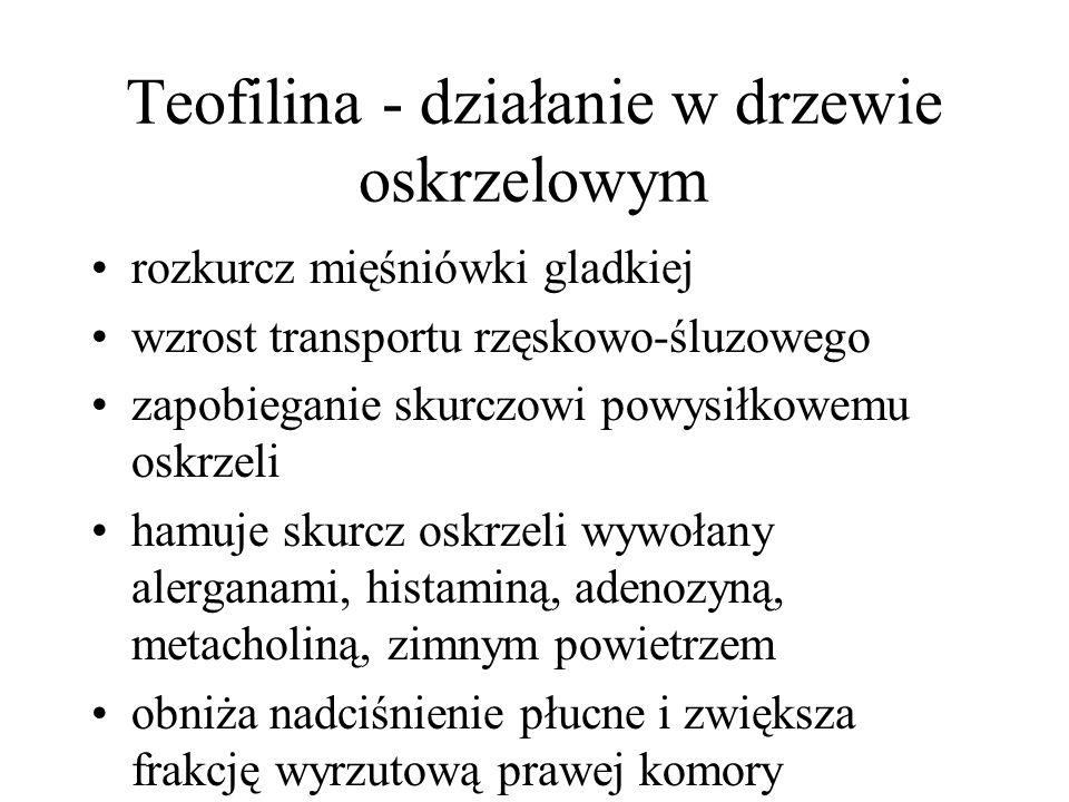 Teofilina - działanie w drzewie oskrzelowym