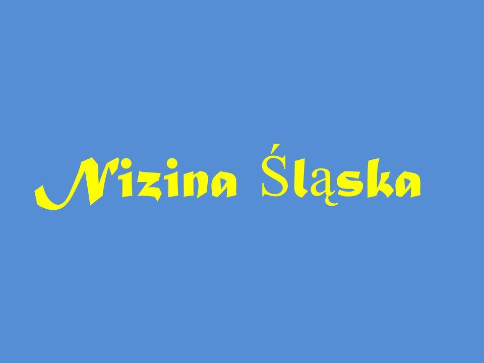Nizina Śląska