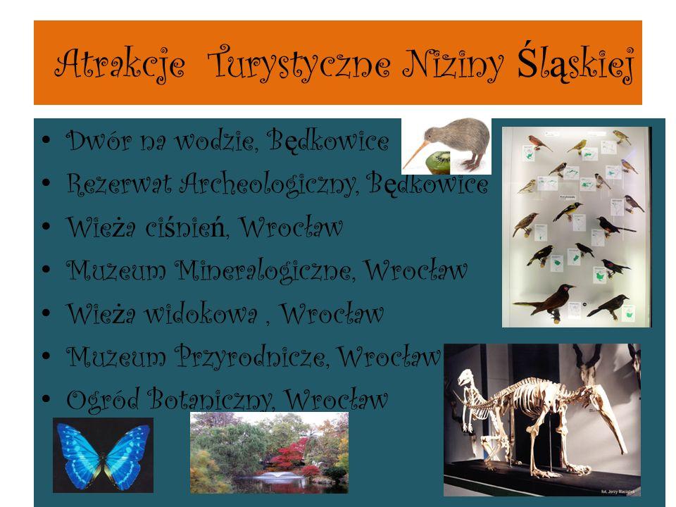 Atrakcje Turystyczne Niziny Śląskiej