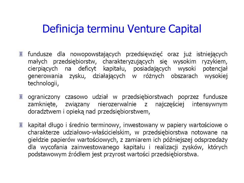 Definicja terminu Venture Capital