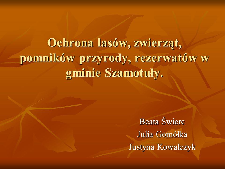 Beata Świerc Julia Gomółka Justyna Kowalczyk