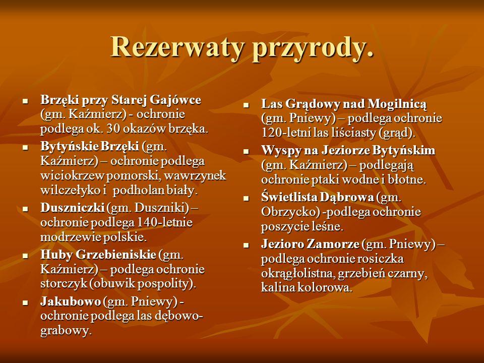 Rezerwaty przyrody.Brzęki przy Starej Gajówce (gm. Kaźmierz) - ochronie podlega ok. 30 okazów brzęka.