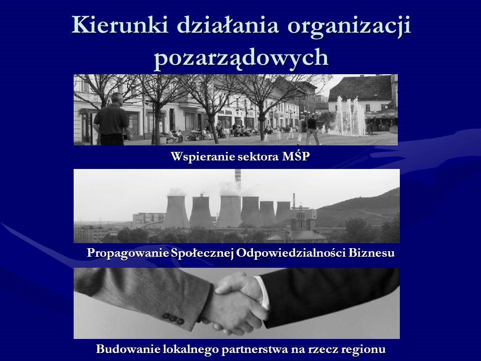 Kierunki działania organizacji pozarządowych