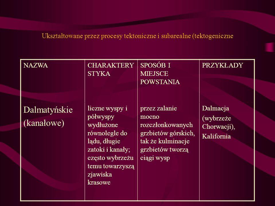 Ukształtowane przez procesy tektoniczne i subarealne (tektogeniczne