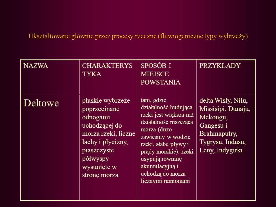 Ukształtowane głównie przez procesy rzeczne (fluwiogeniczne typy wybrzeży)