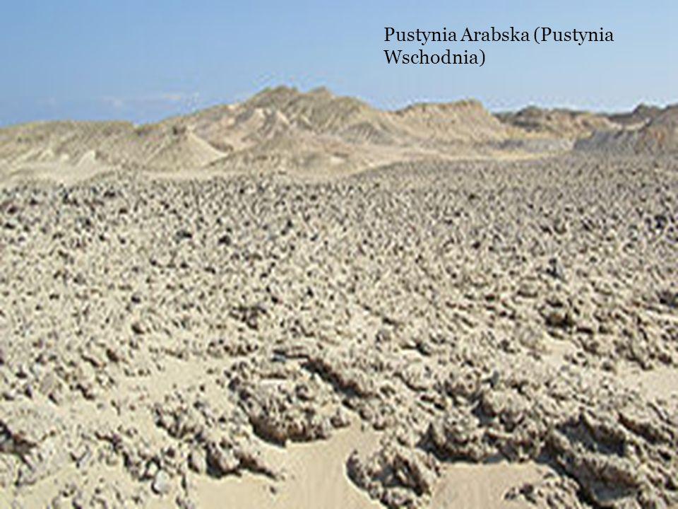 Pustynia Arabska (Pustynia Wschodnia)