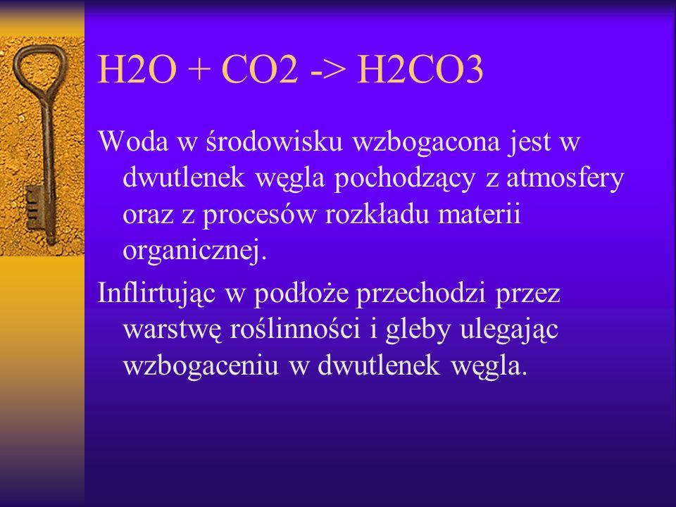 H2O + CO2 -> H2CO3 Woda w środowisku wzbogacona jest w dwutlenek węgla pochodzący z atmosfery oraz z procesów rozkładu materii organicznej.