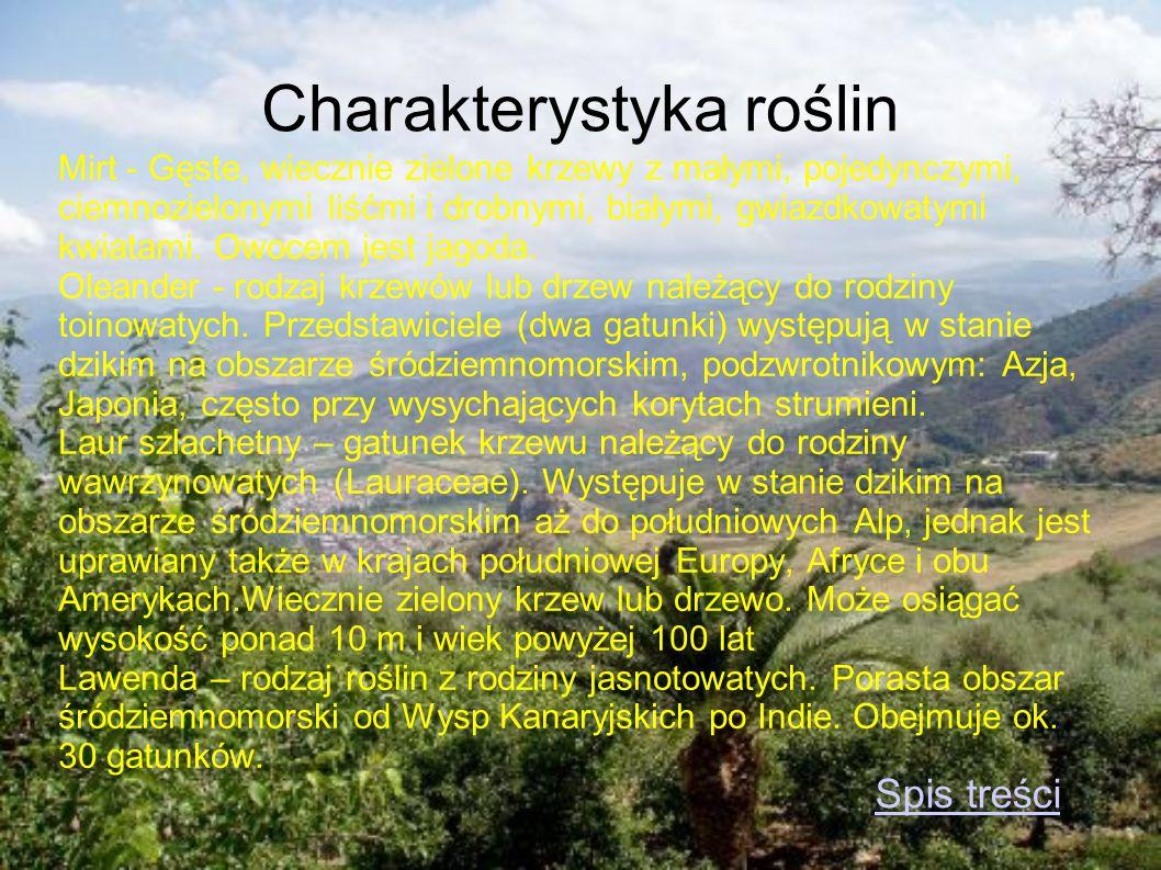 Charakterystyka roślin
