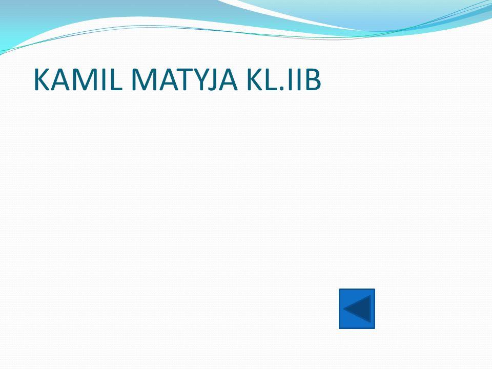 KAMIL MATYJA KL.IIB