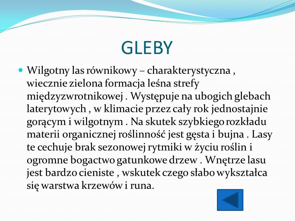 GLEBY