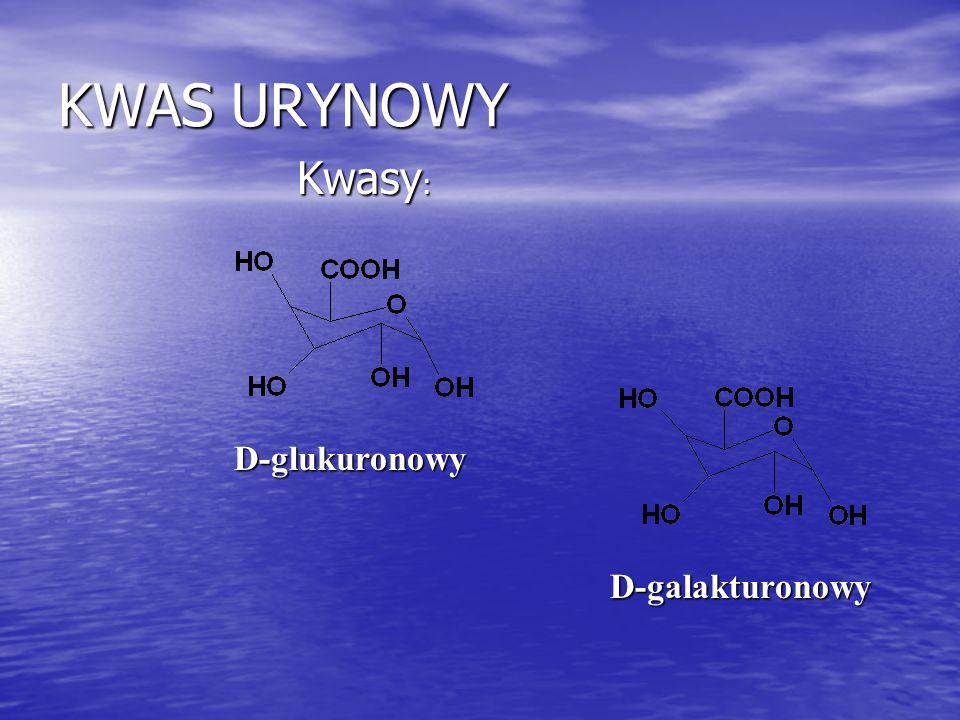 KWAS URYNOWY Kwasy: D-glukuronowy D-galakturonowy