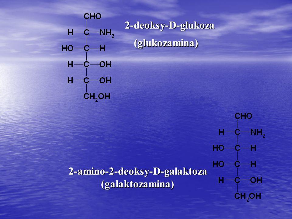 2-amino-2-deoksy-D-galaktoza