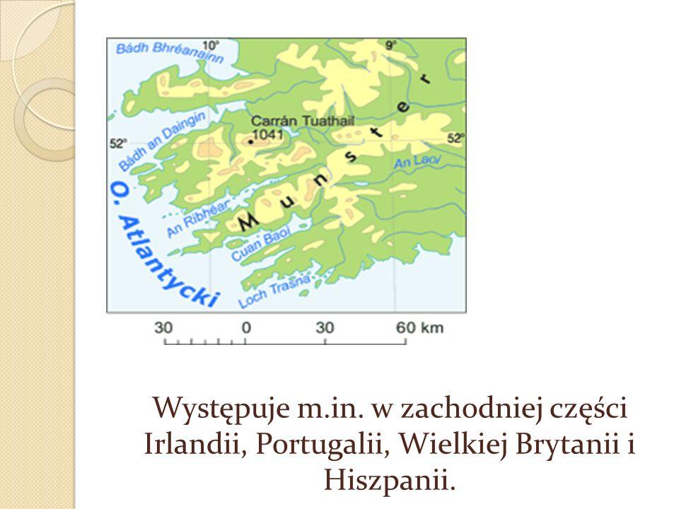 Występuje m.in. w zachodniej części Irlandii, Portugalii, Wielkiej Brytanii i Hiszpanii.