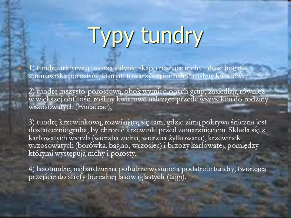 Typy tundry