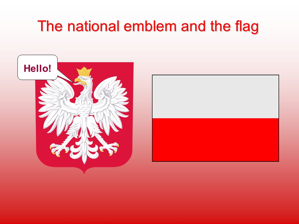 The national emblem and the flag