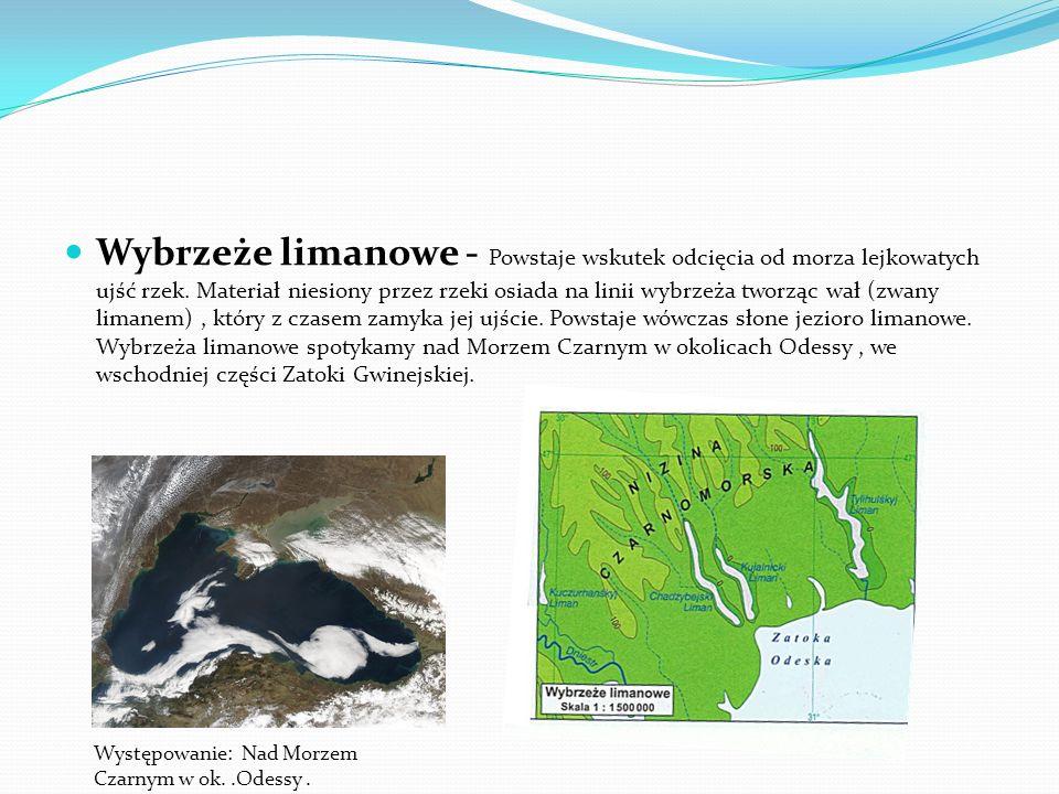 Wybrzeże limanowe - Powstaje wskutek odcięcia od morza lejkowatych ujść rzek. Materiał niesiony przez rzeki osiada na linii wybrzeża tworząc wał (zwany limanem) , który z czasem zamyka jej ujście. Powstaje wówczas słone jezioro limanowe. Wybrzeża limanowe spotykamy nad Morzem Czarnym w okolicach Odessy , we wschodniej części Zatoki Gwinejskiej.