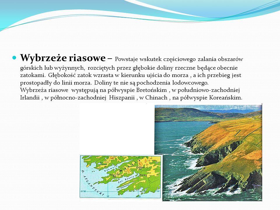 Wybrzeże riasowe – Powstaje wskutek częściowego zalania obszarów górskich lub wyżynnych, rozciętych przez głębokie doliny rzeczne będące obecnie zatokami.