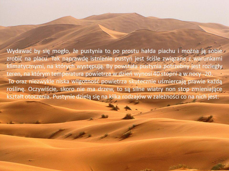 Wydawać by się mogło, że pustynia to po prostu hałda piachu i można ją sobie zrobić na placu. Tak naprawdę istnienie pustyń jest ściśle związane z warunkami klimatycznymi, na których występują. By powstała pustynia potrzebny jest rozległy teren, na którym temperatura powietrza w dzień wynosi 40 stopni a w nocy -20.