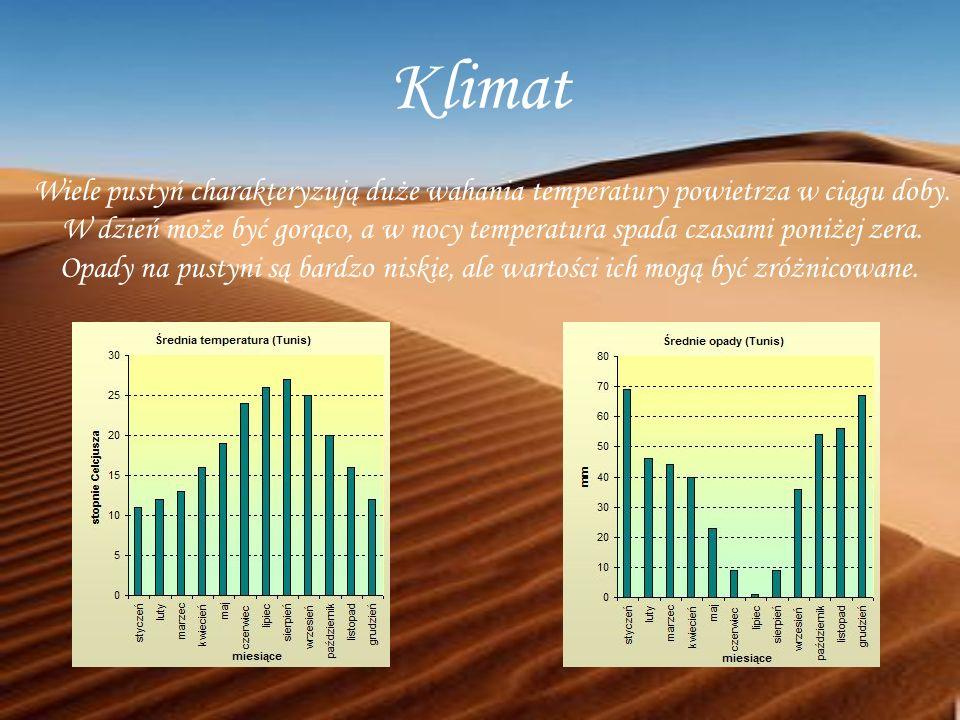 Klimat Wiele pustyń charakteryzują duże wahania temperatury powietrza w ciągu doby.