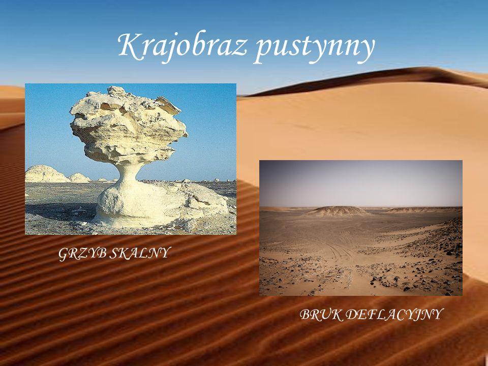 Krajobraz pustynny GRZYB SKALNY BRUK DEFLACYJNY