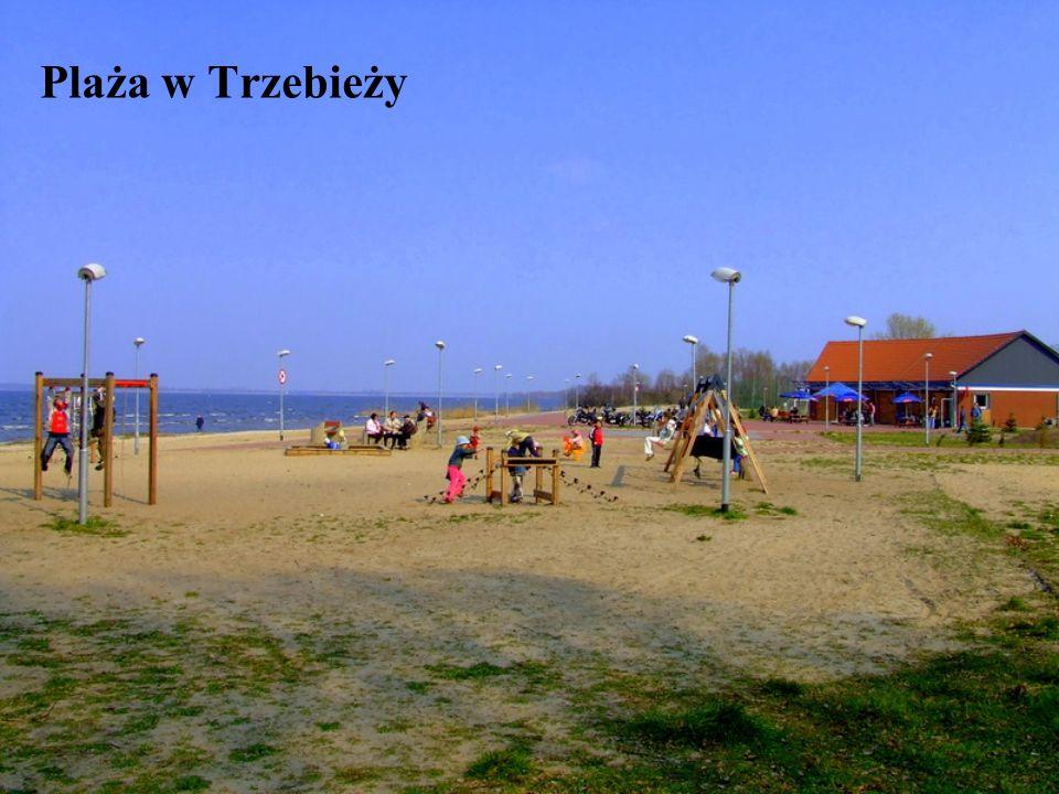 Plaża w Trzebieży