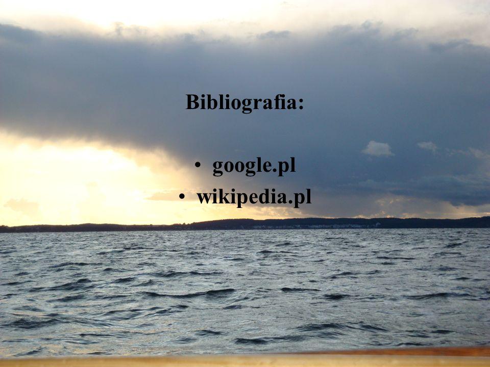 Bibliografia: google.pl wikipedia.pl