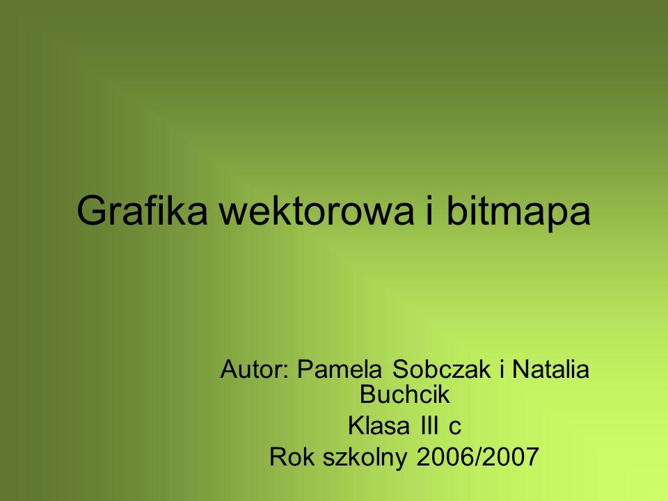 Grafika wektorowa i bitmapa