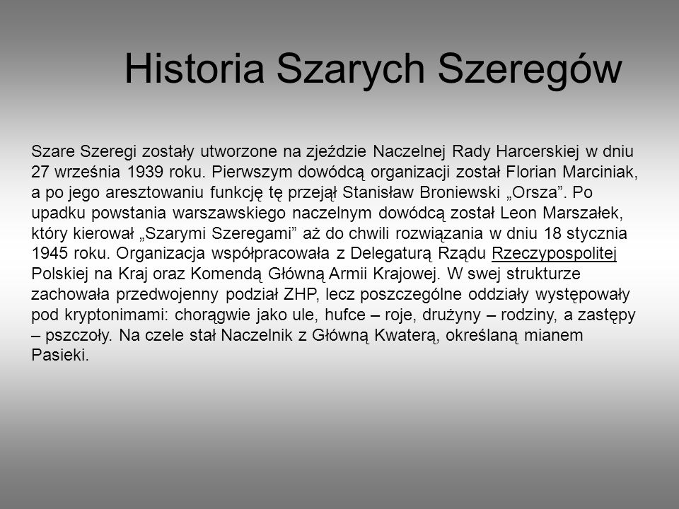 Historia Szarych Szeregów