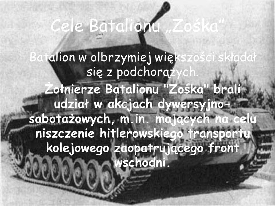 """Cele Batalionu """"Zośka"""