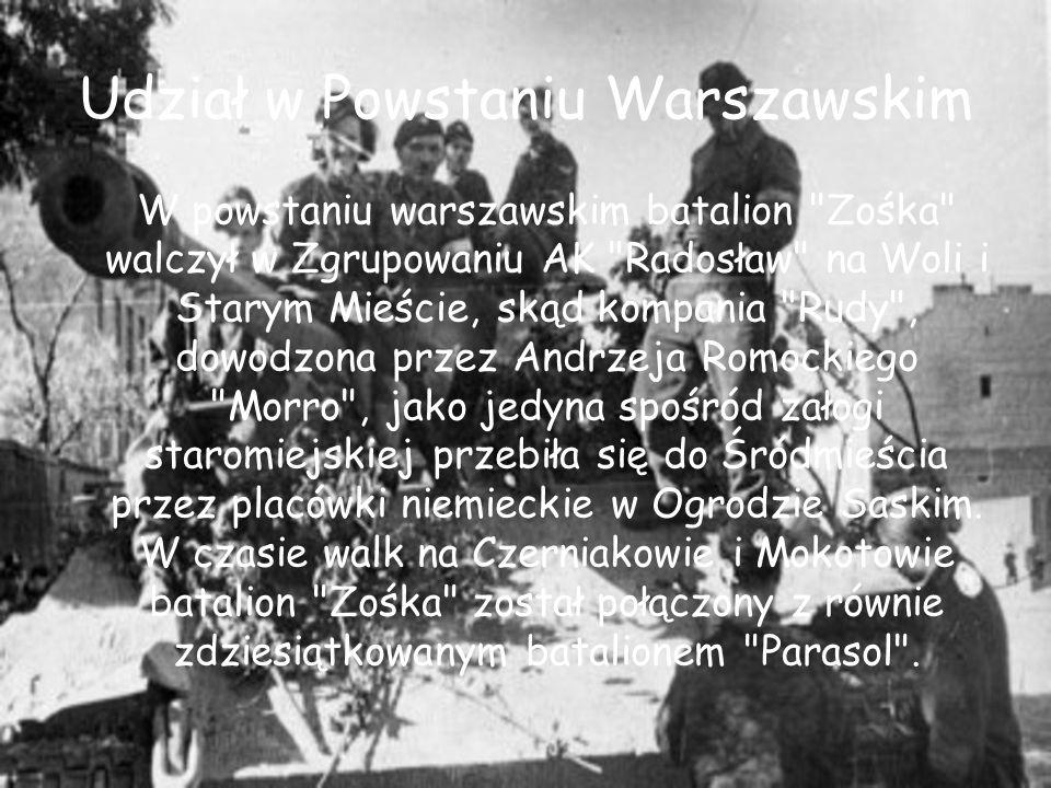 Udział w Powstaniu Warszawskim