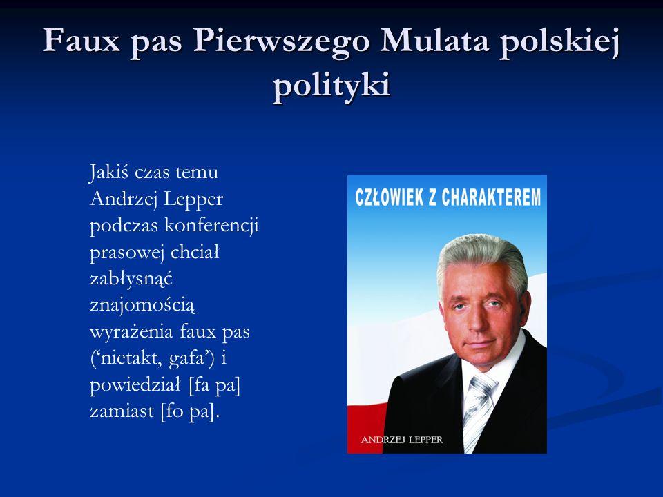 Faux pas Pierwszego Mulata polskiej polityki