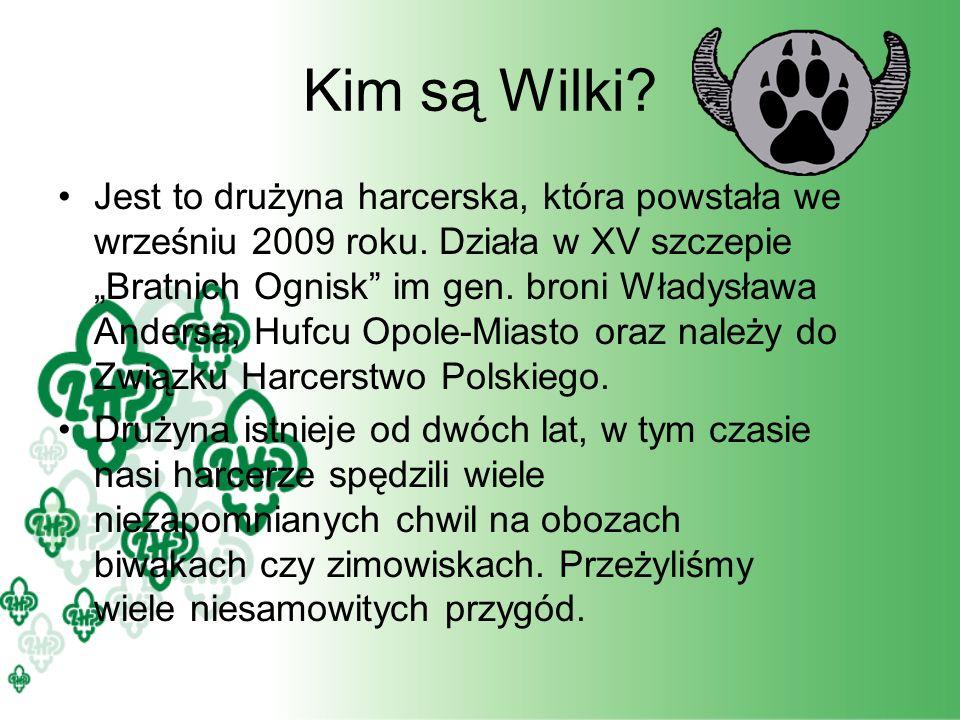 Kim są Wilki