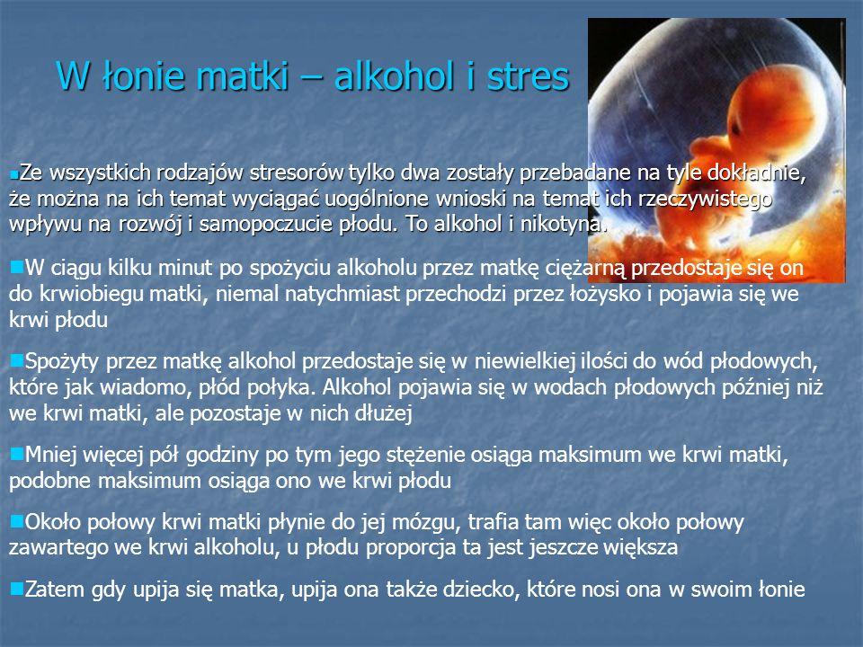 W łonie matki – alkohol i stres
