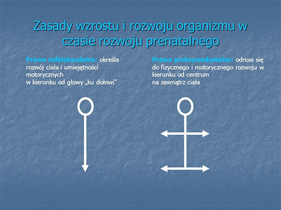 Zasady wzrostu i rozwoju organizmu w czasie rozwoju prenatalnego