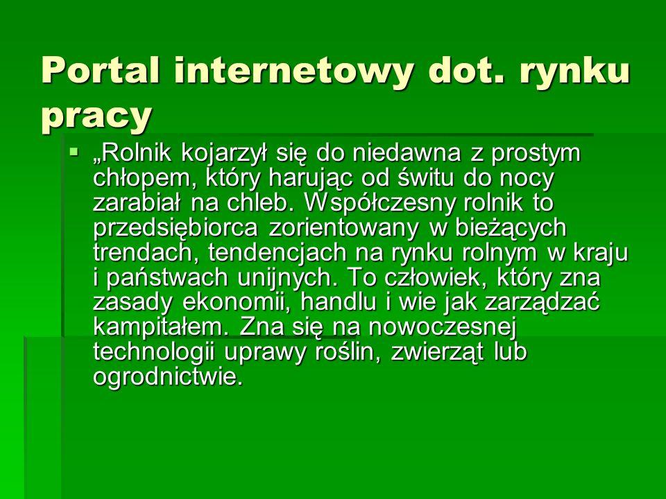 Portal internetowy dot. rynku pracy