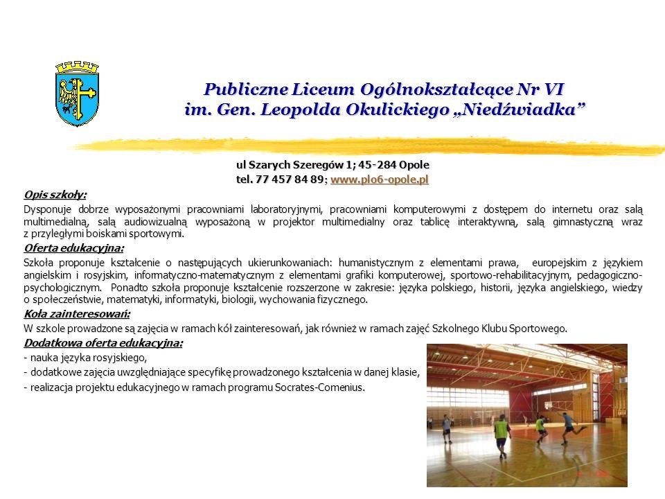 ul Szarych Szeregów 1; 45-284 Opole