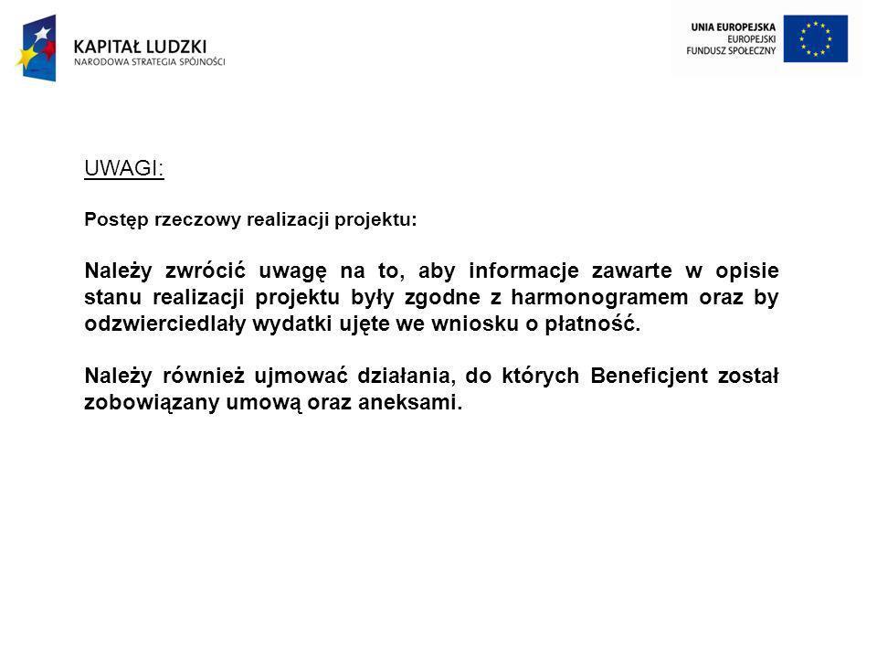 UWAGI: Postęp rzeczowy realizacji projektu: