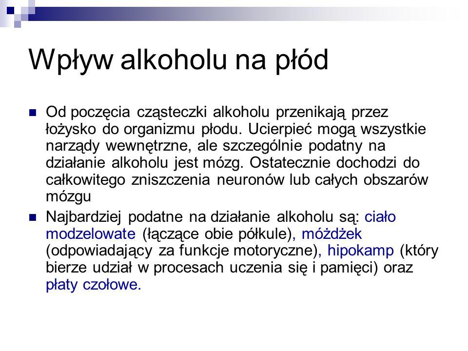 Wpływ alkoholu na płód